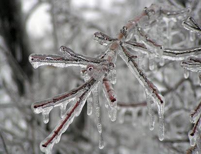 800px-Ice_Storm_Kansas