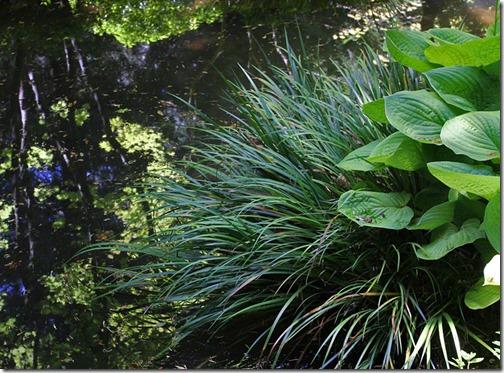 100726_Portland_Japanese_Garden_042