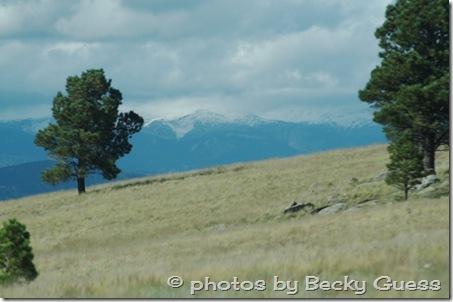 10-05-11 mountains Wheeler Peak 02