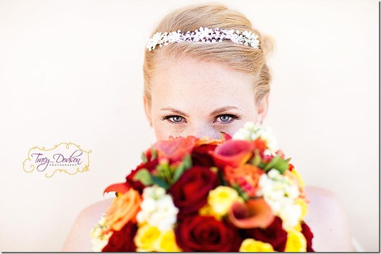 P&A Bride 1   010j rep