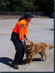 K-9 Dog Search and Rescue Team 008