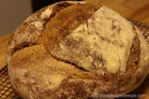 crusty-no-knead-bread008