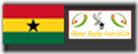 logo-flag-ghana