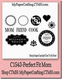 perfect fit mom-480
