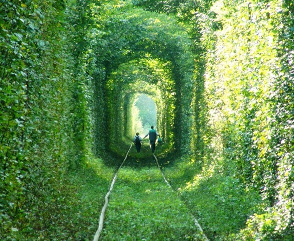 tunnel-of-love-43
