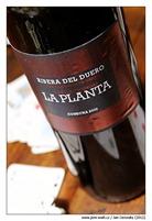 la_planta_2009