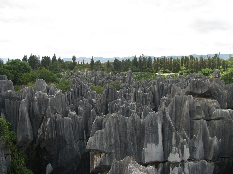 shilin-stone-forest-9