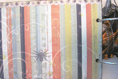Halloween album 8.2012..spider striped page