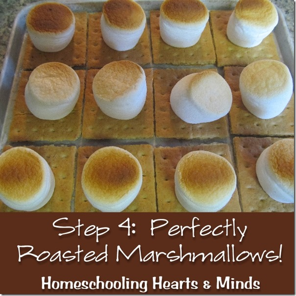Perfectly roasted marshmallows from Your Toaster Oven!  How-to at Homeschooling Hearts & Minds