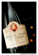 chambolle_ponsot_1996