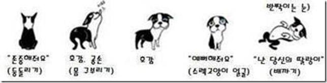 狗狗的30種身體語言