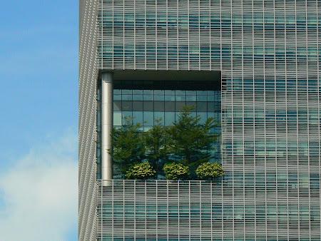 Singapore pictures: Business building