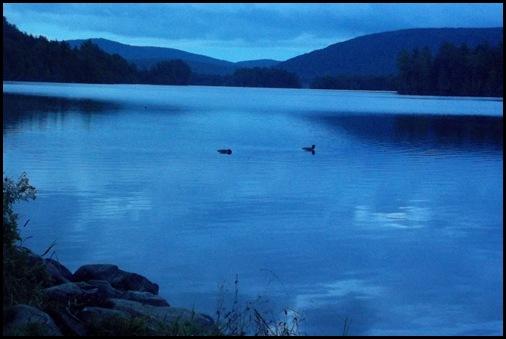 Prong Pond 002