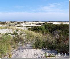 2011-09-13 Cape Cod NP 009