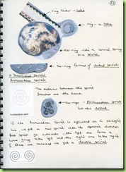 6.Page 23
