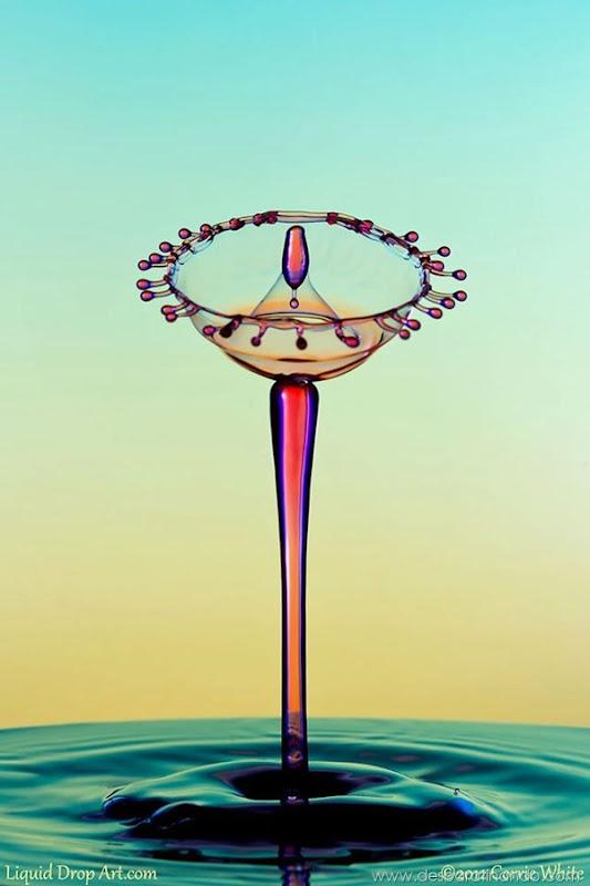 liquid-drop-art-gotas-caindo-foto-velocidade-hora-certa-desbaratinando (240)