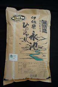 伊佐米永池 無洗米 白米5kg
