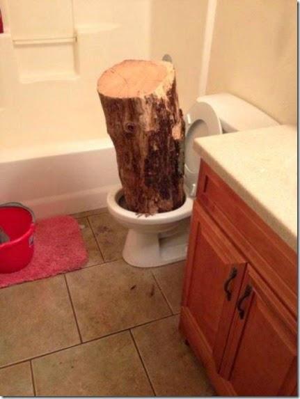 bathroom-craziness-022