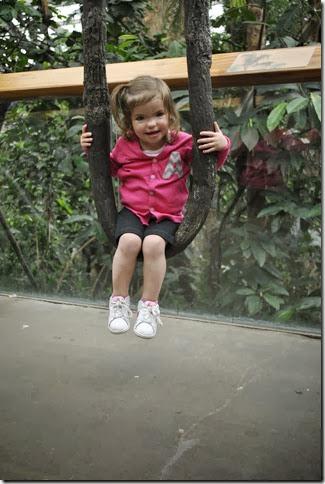 Zoo Bangerts May 13 096