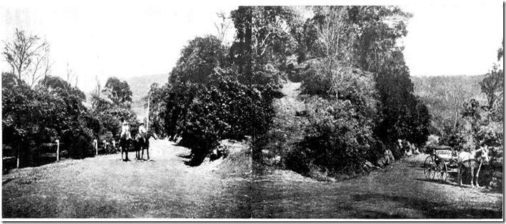kangaroo-valley