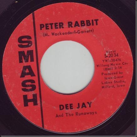 dee jay rabbit