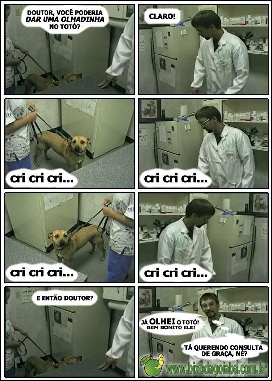 Doutor, dá uma olhadinha no Totó?