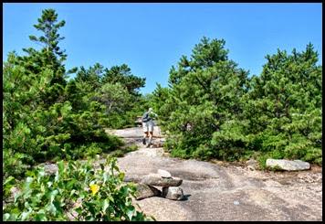 03g - Schiff Path - follow the cairns