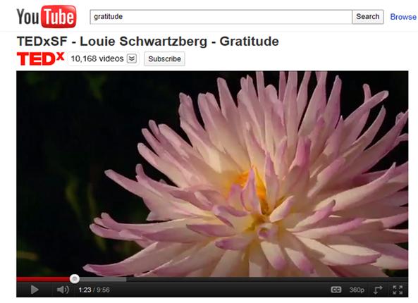 Gratitude Movie