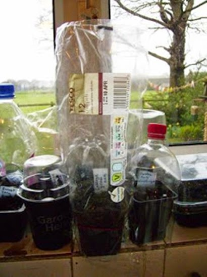 recycled propagator 3