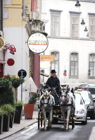 Vienna1013_9