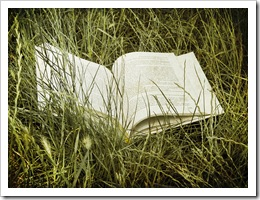 book in grass