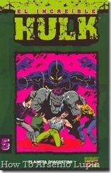 P00005 - Coleccionable Hulk #5 (de 50)