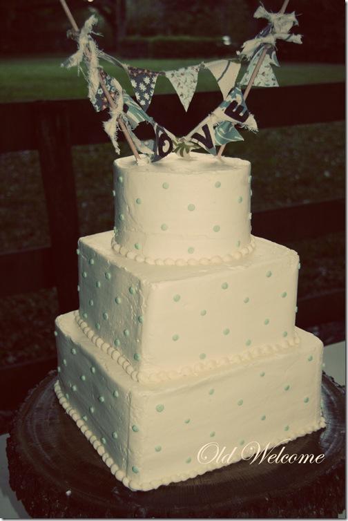 chelseas wedding 023