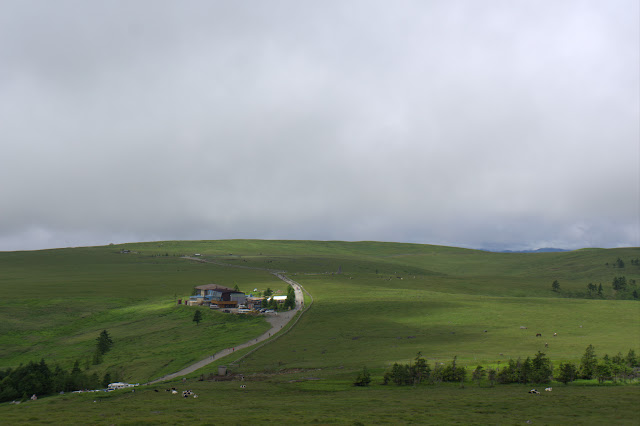 美ヶ原高原。開放感抜群。この方向は曇ってたけど。あと、大変風が強い