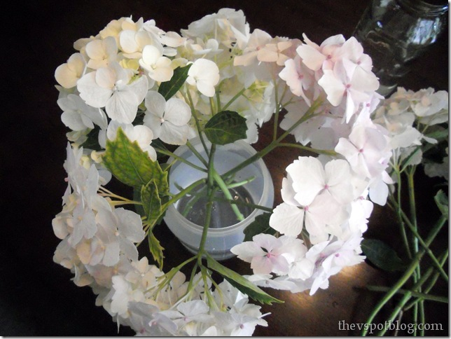 hydrangea, flower, white, arrangement