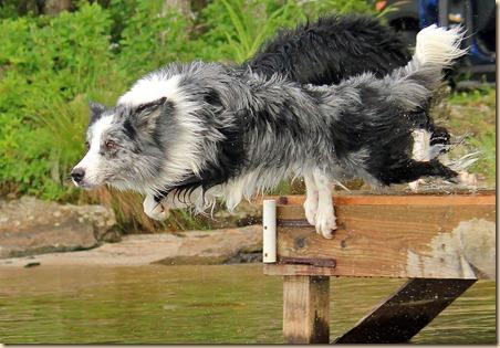 Dogs_Lake_070312e (4)