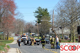 Car Into Pole In Front Of 164 East Eckerson Rd - DSC_0038.JPG