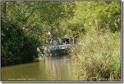 Arundel WWT D50  25-05-2012 12-50-40