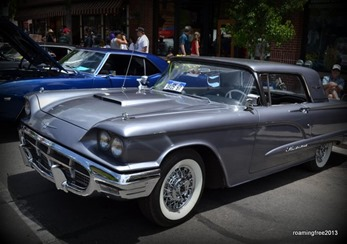 Nice Thunderbird - different color!