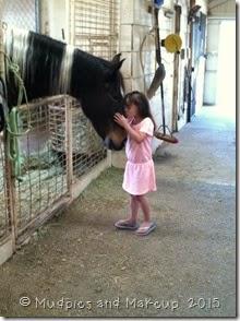 olivia horse