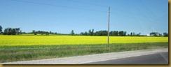 2011-6-30 travel to Mattawa from Smiths Falls Ontario (6) (800x305)