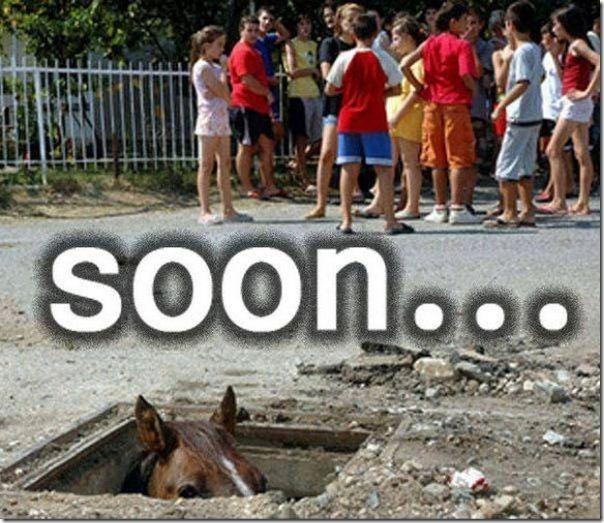 Em breve, muito em breve (1)