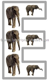 e elephant
