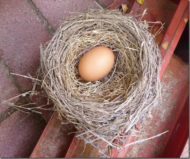 egg 010