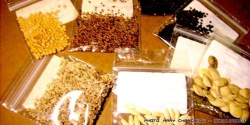 Υπογράψτε για τη σωτηρία των παραδοσιακών σπόρων