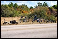 Guarding the Bikes