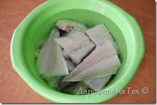 Риба треска осолена_Μπακαλιάρος παστός_6785