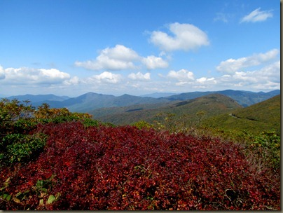 Craggy Gardens overlook