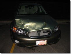 Deer collision 2007