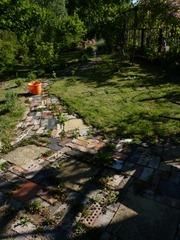 garden june 2011 024